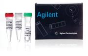 Набор для прямого ПЦР из крови SureDirect Blood PCR Kit / SureDirect Blood PCR Kit, 100 Rxns