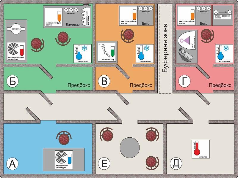 схема организации ПЦР-лаборатории