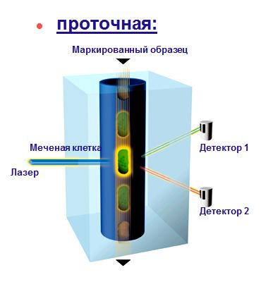 Проточная флюоцитометрия