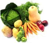 Анализ генетически- модифицированных организмов (ГМО)