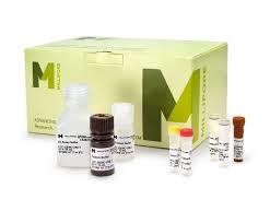 Мультиплексный анализ - Маркеры сердечно-сосудистых заболеваний