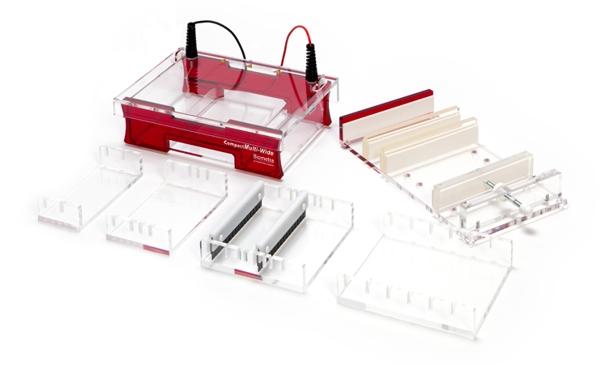 система для электрофореза Compact Multi-Wide