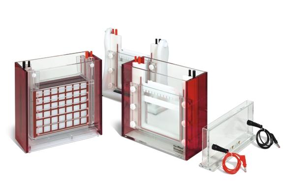система для электрофореза Eco-Maxi