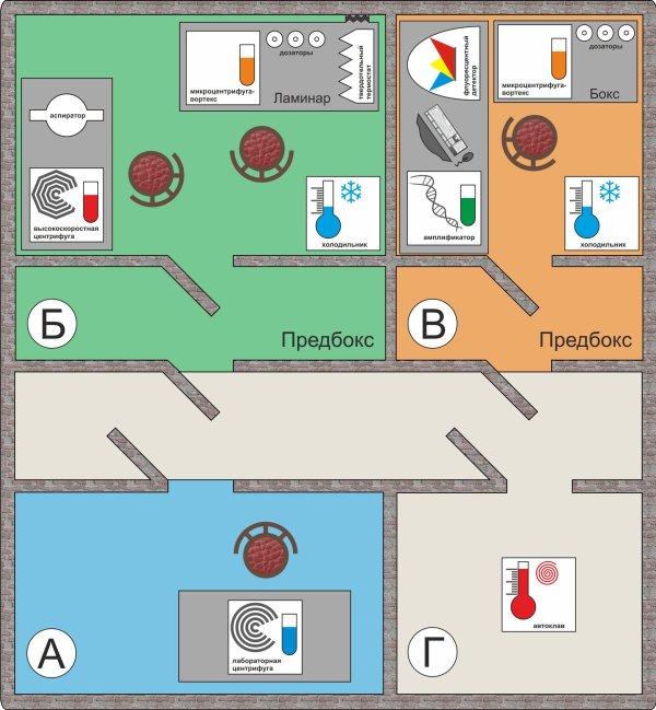 схема лаборатории с ПЦР в модифиакции FLASH