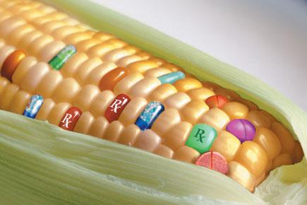 анализ ГМО