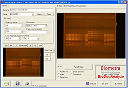 BioDocAnalyze