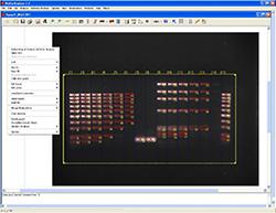 BioDocAnalyze module