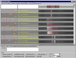Similarity Analysis module