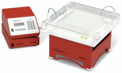 система температурного градиентного гель-электрофореза TGGE Maxi
