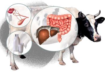 оперативная идентификация возбудителей инфекционных болезней