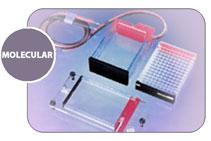 Камера для электрофореза MicroSSP