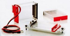 система для электрофореза MicroSSP