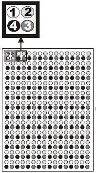 формат 384-well Micro SSP Tray