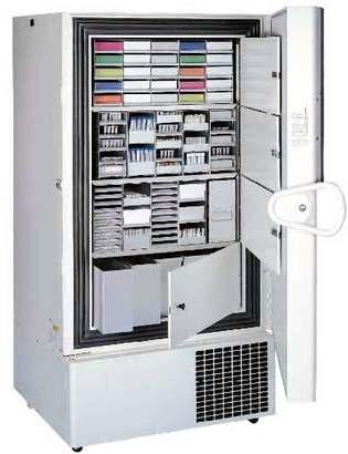 Низкотемпературные вертикальные однодверные морозильники Thermo Scientific Forma 900